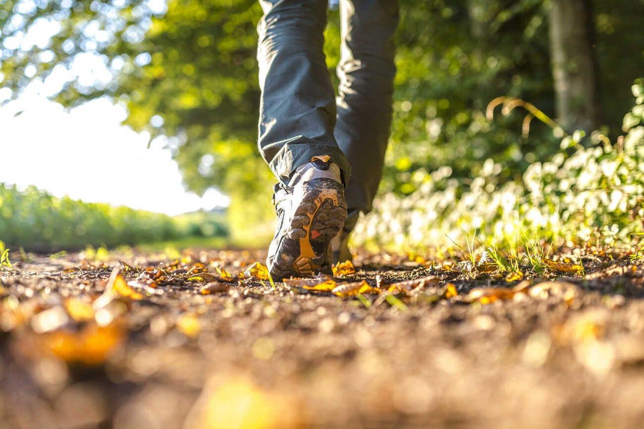 Durabrik & Natuurpunt maken samen een wandelgids